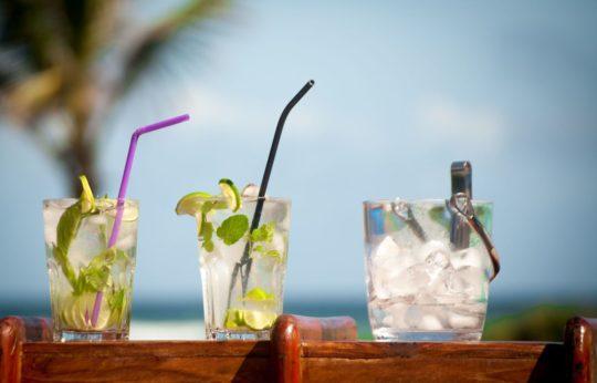 plastic & inox straws